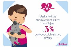 brandhero imateriały domediów społecznościowych dla marki Strefa Zdrowia - wewspółpracy zagencją PressToRead