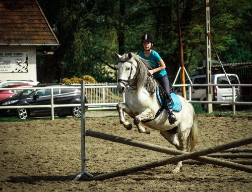 dziecko na koniu skacze przez przeszkodę